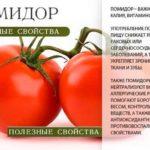 Польза помидор для организма человека